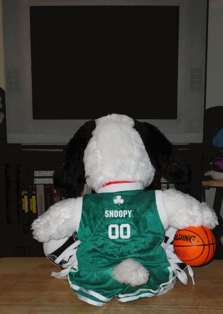 celtics beagle in front of blank tv screen