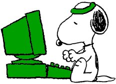 The Celtics Beagle at his computer